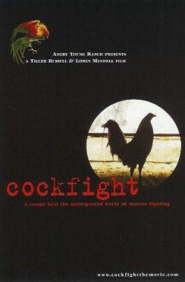 Cockfight Film